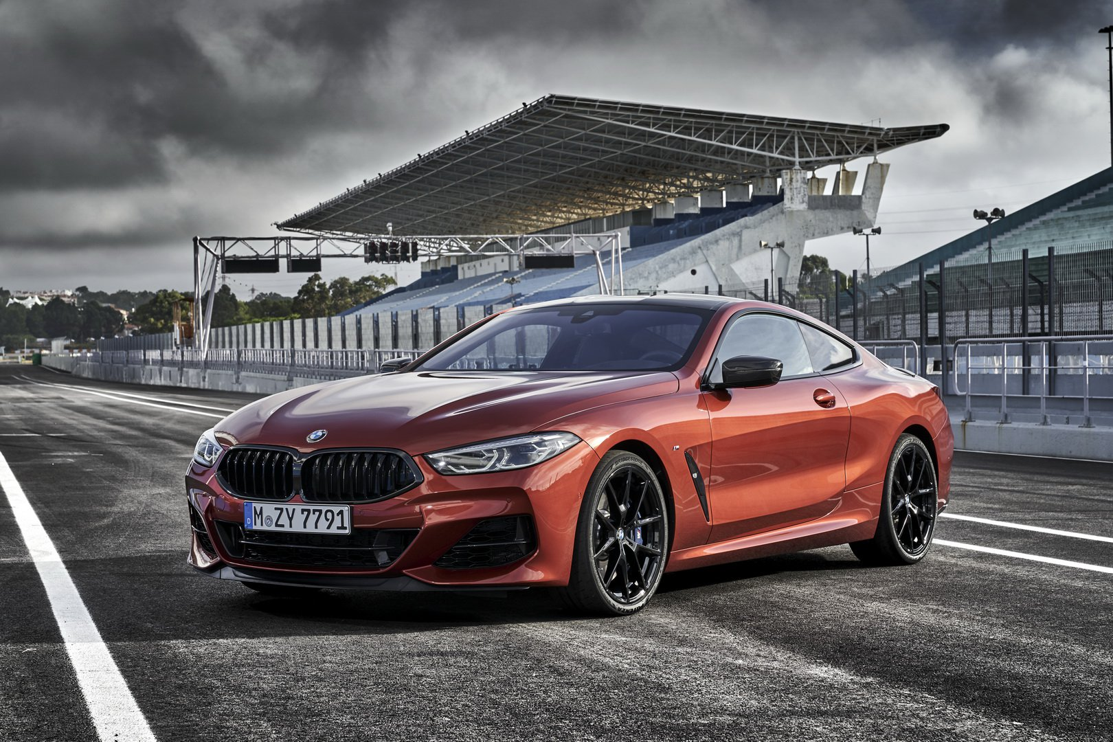 a2f96345-2019-bmw-8-series-coupe-14.jpg